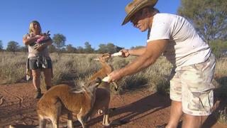 Die Reimanns erreichen Alice Springs bei TV NOW