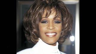 Die letzten Stunden von Whitney Houston