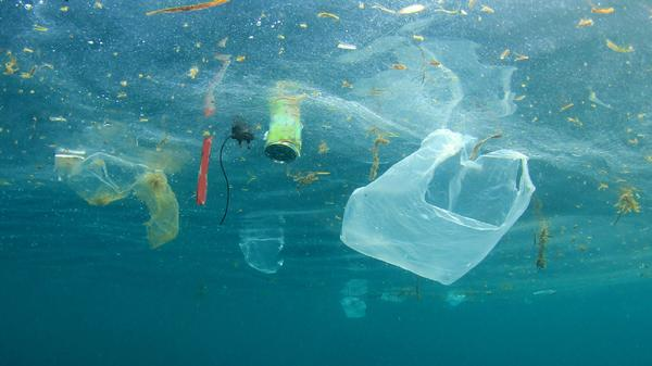 Müllkippe Meer - Kampf gegen den Plastikmüll