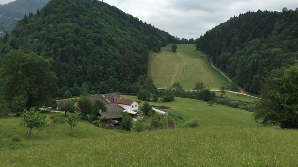 Die Farm in den Alpen