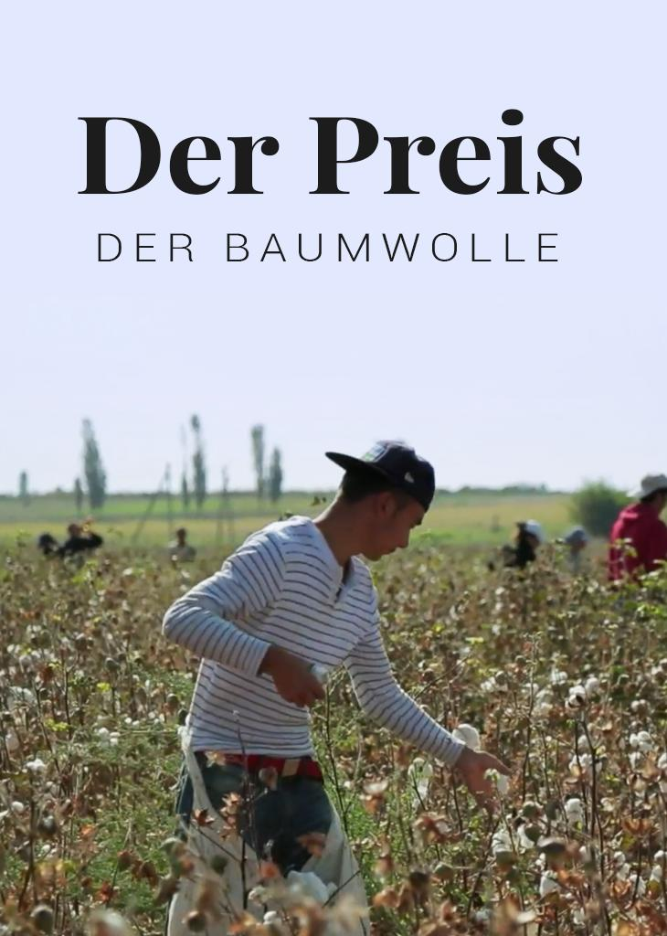 Der Preis der Baumwolle