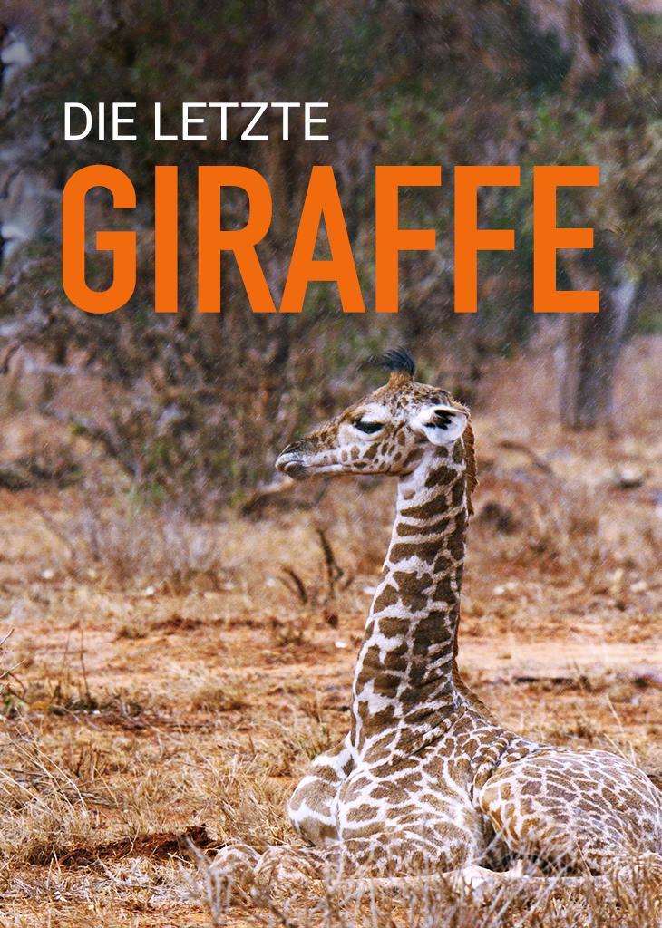 Die letzte Giraffe
