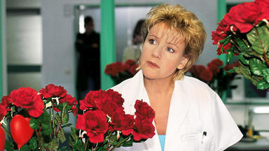 Nikola - Der Rosenkavalier