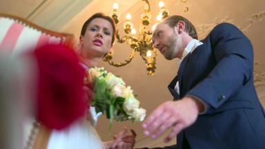 Meine Geschichte - Mein Leben - Rote Rose Bringt Braut Aus Der Fassung