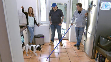 Der Hundeprofi - \