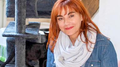 Hundkatzemaus - Thema Heute U.a.: Rasseportrait Hauskatze