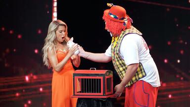 Das Supertalent - Zauberer Und Clown