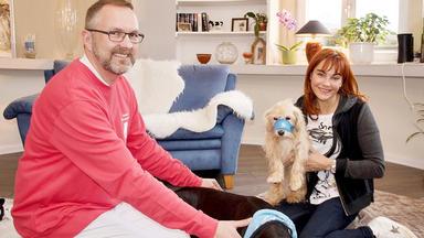 Hundkatzemaus - Thema Heute U.a.: Erste Hilfe Bei Hund & Katze
