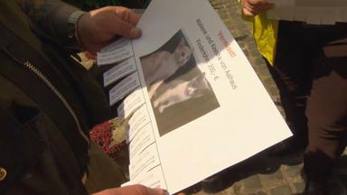 Privatdetektive Im Einsatz - Das Geschäft Mit Dem Tod - Alles Für Die Katz'