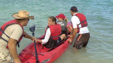 Die Reimanns - Die Mit Den Haien Schwimmen - Die Reimanns Auf Hawaii-urlaub