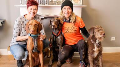 Hundkatzemaus - Thema Heute U.a.: Waschtag! Zu Besuch Im Hundesalon