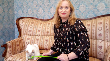 Hundkatzemaus - Thema Heute U.a.: Katzenspielsünden