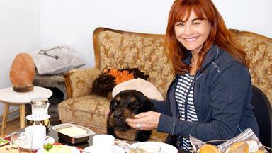 Hundkatzemaus - Thema Heute U.a.: Essensreste Für Hund Und Katze?