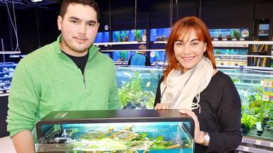 Hundkatzemaus - Thema Heute U.a.: Mein Erstes Aquarium