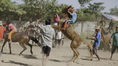 Riders Of Destiny - Indonesiens Kleine Reiter - Riders Of Destiny - Indonesiens Kleine Reiter