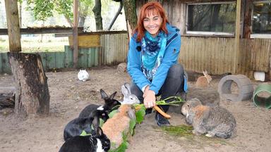 Hundkatzemaus - Thema Heute U.a.: Kaninchen Fun-facts!