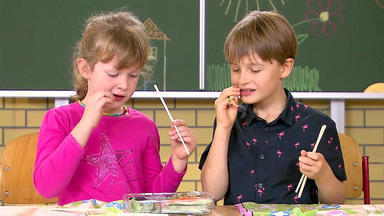 Hot Oder Schrott - Die Allestester - Die Junior-tester