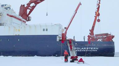 Wohin Die Reise Geht - Forscher In Der Antarktis