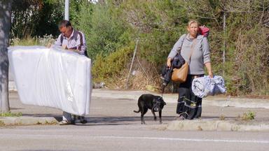 Die Alltagskämpfer - Überleben In Deutschland - Gestrandet Auf Mallorca: Auf Der Dunklen Seite Der Ferieninsel