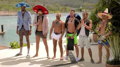 Paradise Hotel - Mr. Sombrero
