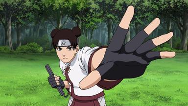 Naruto Shippuden - Tentens Problem