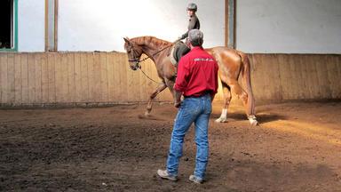 Die Pferdeprofis - Heute U.a. Mit: Sabrina Mit \