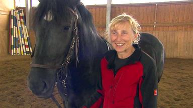 Die Pferdeprofis - Heute U.a. Mit: Ruth Stückl Mit Stute \