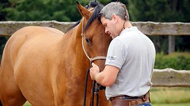 Die Pferdeprofis - Heute U.a. Mit: Christel Kraus Mit \