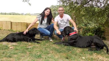 Der Hundeprofi - Heute U.a. Mit: Julia & Matthias Mit Der Deutschen Dogge Luke