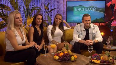 Bachelor In Paradise - Der Talk - Woche Für Woche Kommen Aktuelle Und Ehemalige Singles Zu Wort