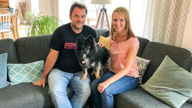 Der Hundeprofi - Heute U.a. Mit: Sabine Und \