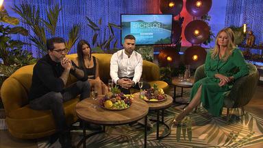 Bachelor In Paradise - Der Talk - Von Thailand Nach Köln
