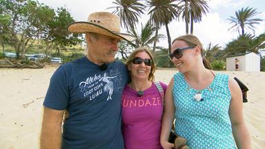 Die Reimanns - Besichtigungstermin Auf Hawaii