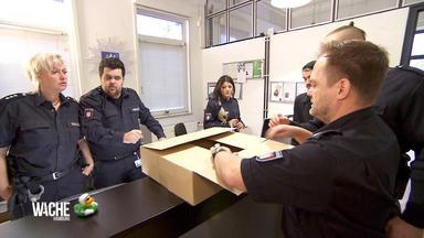 Die Wache Hamburg - Schlange Auf Abwegen - Papa Ist Verschwunden - Frau In Wohnung Angegriffen - Roter Schlüpfer Löst Ei