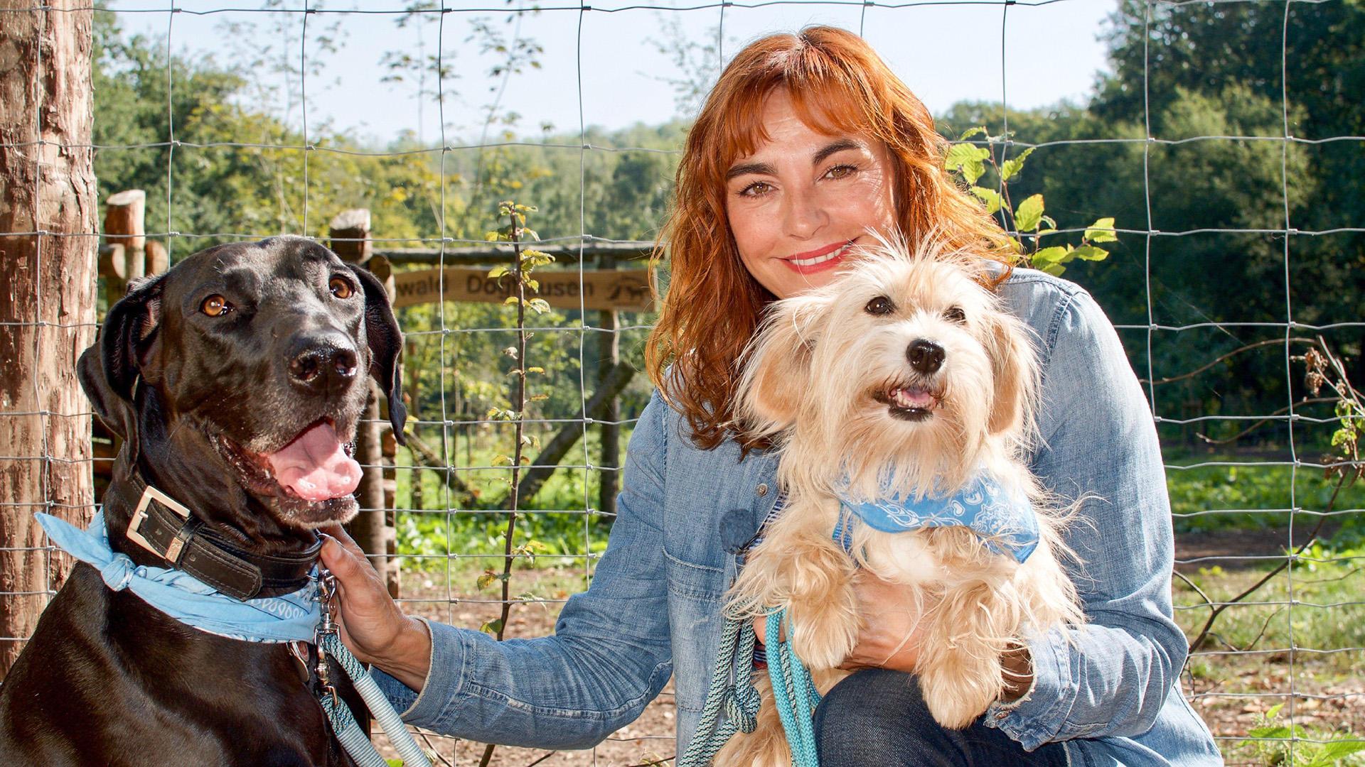 Thema heute u.a.: Der Hundewald Lünen | Folge 46