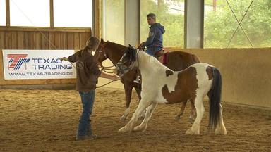 Die Pferdeprofis - Heute U.a. Mit: Marlene Mit \