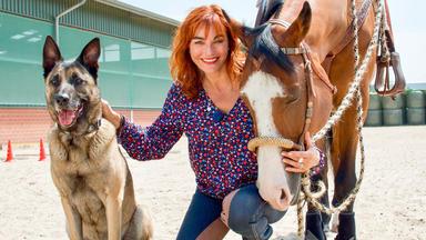 Hundkatzemaus - Thema Heute U.a.: Horse & Dog Trail