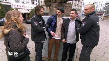 Die Wache Hamburg - Die Antänzer - Das Mädchen Im Auto - Die Sexy Handwerkerin - Unfall Mit Lieferwagen