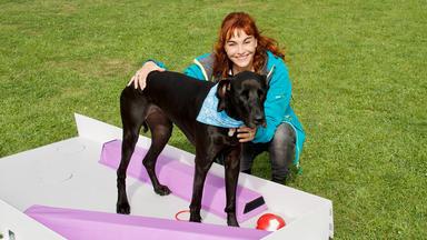Hundkatzemaus - Thema Heute U.a.: Doggy-golf