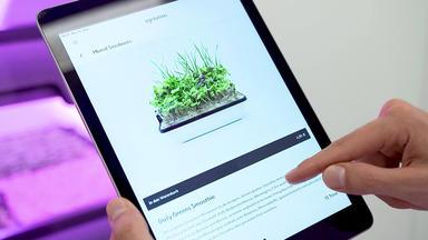 Startup News - Vertical Farming