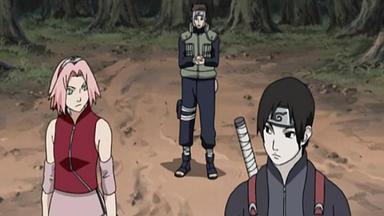Naruto Shippuden - Zusammen- Und Gegenspiel