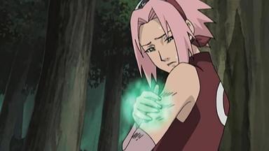 Naruto Shippuden - Die Frucht Des Verrates