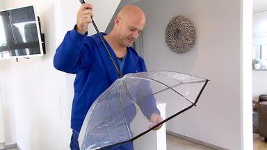 Hot Oder Schrott - Die Allestester - Heute U.a.: Regenschirm Für Hunde