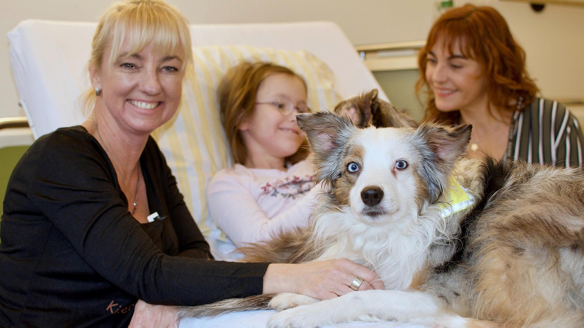 Heute u.a.: Hunde mit Auftrag - Die Krankenhauskuschler | Folge 6