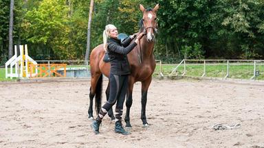 Die Pferdeprofis - Heute U.a.: Xenia Und Stute \