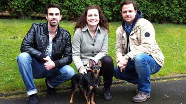 Der Hundeprofi - Heute U.a.: Familie Glar Mit Zwergpinscher \