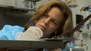 Dr. G - Beruf: Gerichtsmedizinerin - Tödliches Schweigen