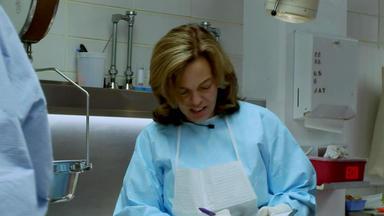 Dr. G - Beruf: Gerichtsmedizinerin - Tödlicher Absturz