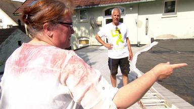 Ab Ins Beet! - Heute U.a.: Am Jadebusen Wird Das Dach Grün