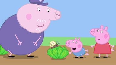 Peppa Pig - Kleine Wesen
